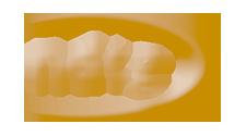 National Demolition Training Group Logo